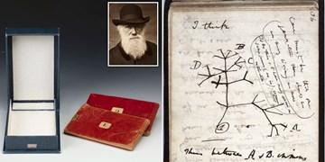 کتابهای میلیون دلاری داروین گم شدند!/ پایان ناکام جستجو در قفسه ۲۰۰ کیلومتری!