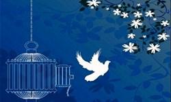 360 زندانی غیرعمد در البرز آزاد شدند