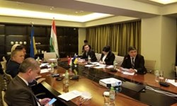 نخستین نشست مجازی شورای تجاری تاجیکستان و اوکراین