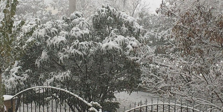 گزارش فارس از برف  نوبرانه زمستانی/ سلام پاییزی زمستان به آذربایجانیها+ فیلم