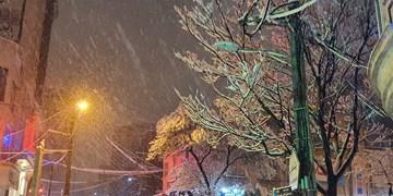 استان اردبیل در پاییز زمستانی شد