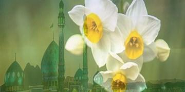 جمعههای انتظار| شناخت امام، رمز اسلام واقعی، وظیفه ای همگانی