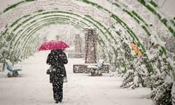 فیلم/ پهن شدن سفرههای دل ابرهای پاییزی در آذربایجان