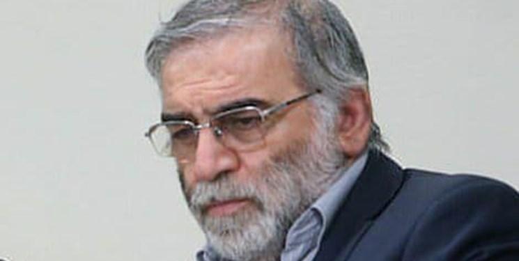 اولین واکنش شاعرانه به ترور شهید فخریزاده