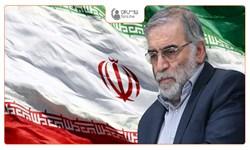 کمپین انتقام سخت داغ شد؛ مردم در فارس من: عاملان ترور فخریزاده را مجازات کنید