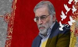 شهادت فخریزاده وحشت مستکبران را از سربلندی ایران اسلامی آشکار گردانید