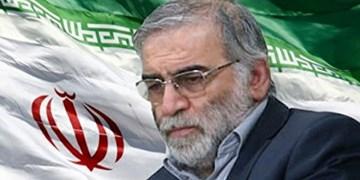 ملت ایران خواستار عکسالعمل مقتدرانه در برابر ترور شهید «فخریزاده» است
