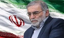 واکنش شاعر خوزستانی به شهادت محسن فخریزاده