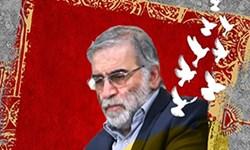 خون مطهر فخریزادهها چراغ راه  پیشرفت کشور را پرفروغتر خواهد کرد