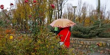 باران پاییزی در بام ایران