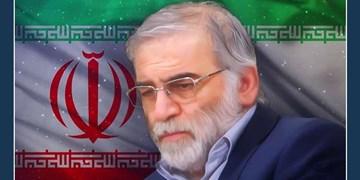 پیامهای محکومیت ترور شهید محسن فخریزاده/ انتقام سخت در انتظار جنایتکاران