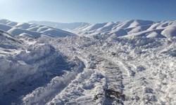 زشت و زیبای برف در بستانآباد / از ارتفاع یک متری برف تا شکستن درختان