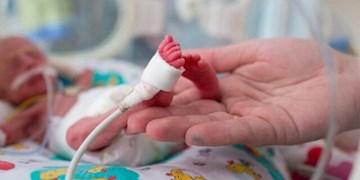 مجازات شدید برای والدینی که اصرار به تولدهای تقویمی دارند/ پزشک، ماما، پدر و مادر در زایمان مناسبتی مجرم هستند