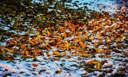 فیلم| همنشینی زیبای پاییز و زمستان در قلعهچای عجبشیر