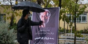 «پرویز پورحسینی» در کنار همسرش آرام گرفت+تصاویر
