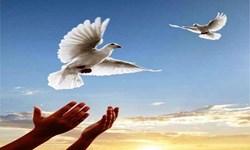 آزادی 5 زندانی در بند به همت بسیجیان کاشان