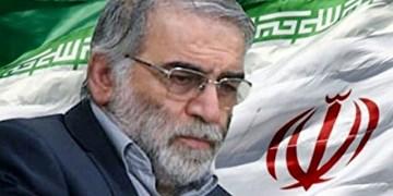 ارمنستان: ترور دانشمند برجسته ایرانی را محکوم میکنیم