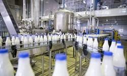 رفع موانع توسعه بزرگترین کارخانه تولید شیر کشور در البرز
