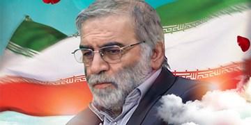 سفیر ایران در یونان: حق پاسخ به ترور شهید فخری زاده محفوظ است