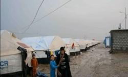 دولت عراق: پرونده آوارگان به طور کامل بسته میشود