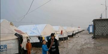 آخرین اردوگاه آوارگان در استان کرکوک عراق تعطیل شد