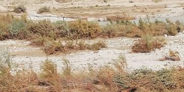 رودخانه زهره طغیان کرد/ خط انتقال آب باباکلان تخریب شد