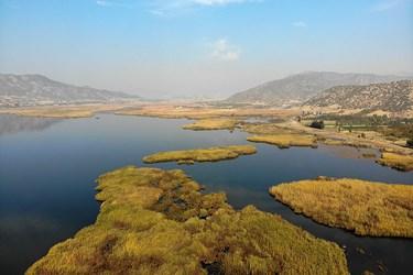 تالاب زریوار از مهمترین منابع آبی و یکی از زیستگاههای مهم استان کرستان است.