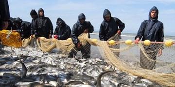 مجوز گردشگری برای ۶ پره صیادی گیلان صادر شد/تلاش برای صدور مجوز پرورش ماهی در قفس