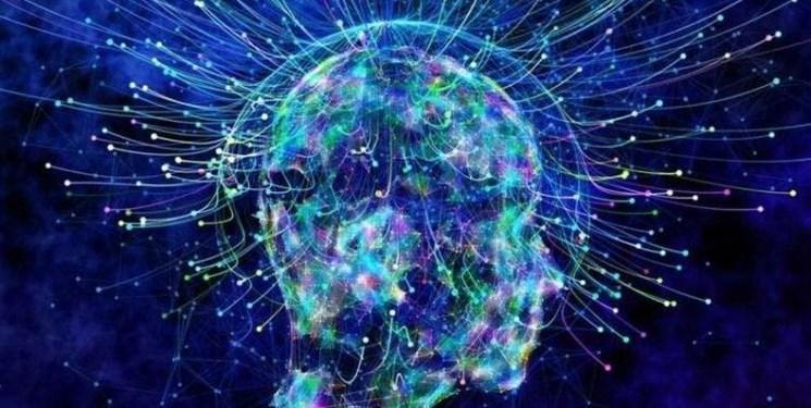 علوم شناختی، دانش میان رشتهای برای درک فعالیتهای مغزی