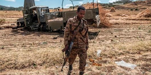 آدیسآبابا، دولت مصر را به جنگافروزی در شاخ آفریقا و اتیوپی متهم کرد