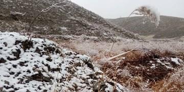 فیلم/بارش برف در شهرستان های  خراسان رضوی