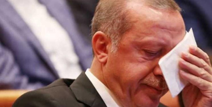 یک شاعر جواب اردوغان را داد/ گمان مدار که تُرک غیور خام تو شد