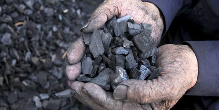 واقعیات قاچاق چوب و کوره زغال در کهگیلویه و بویراحمد/منابع طبیعی به بایگانی خود مراجعه کند؟!+فیلم