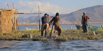 چشمان منتظر به آب صیادان در جزیرههای شناور «زریوار» + فیلم و عکس