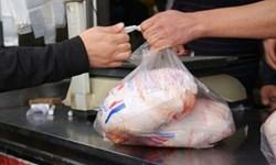 نوسان توزیع مرغ با تصمیمات مقطعی مسئولان حل نمیشود