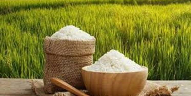 دلایل افزایش 38 درصدی قیمت برنج ایرانی / گرانی 30 تا 90 درصدی برخی اقلام خوراکی طی 5 ماه