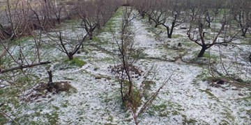 هشدار بارش تگرگ در ۵ استان/ روزهای پربارشی در کشور پیشِ رو داریم