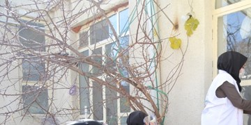 کاهش بیماری کرونا  دستاورد بزرگ طرح شهید سلیمانی