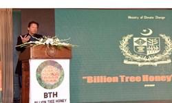 طرح تولید عسل و کاشت میلیاردها درخت در پاکستان رسماً کلید خورد