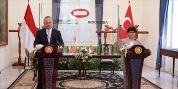 تاکید ترکیه و اندونزی بر مقابله با اسلام هراسی و تقویت سازمان همکاری اسلامی