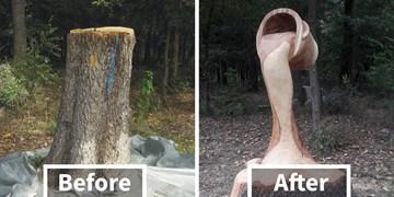 هنرنمایی مجسمهساز خودآموز روی چوب + تصاویر