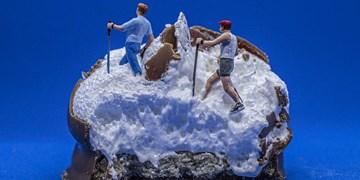 محتویات یخچال سوژه عکاس بریتانیایی/ از صخره نوردی با پیاز تا رفتن به معدن تخم مرغ ها در قرنطینه+عکس