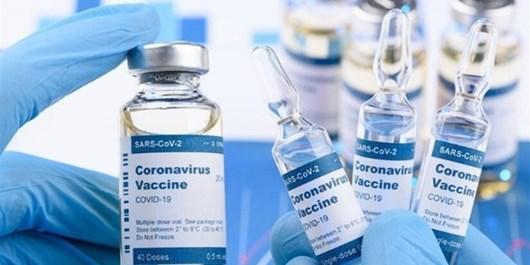 لزوم شفافسازی قراردادهای خرید واکسن/ هیچ کشوری از طریق کواکس واکسن نخریده است