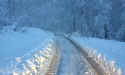 امداد کرونایی در دل برف+ فیلم