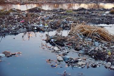 انباشت زباله ها و ایجاد بوی ناشی از آن در این فضاها