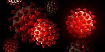 نقش گروهی از سلولهای ایمنی بدن در شدت ابتلا به کرونا