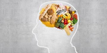 بهترین خوراکیها برای تقویت مغز را بشناسید+اینفوگرافیک