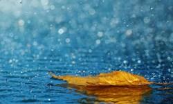 پیش بینی بارش باران پراکنده در برخی نقاط خراسان رضوی/ سرعت وزش باد در تربت حیدریه ۴۳ کیلومتر بر ساعت بوده است