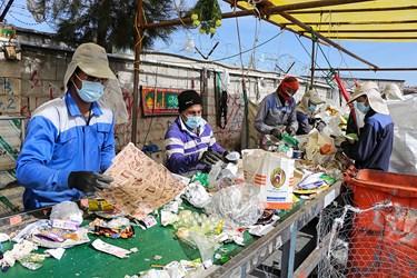 کارگرها در حال تفکیک پسماندهای خشک از جمله: بطری، شیشه، پلاستیک، حلب، کارتن و.../کارگاه شماره یک