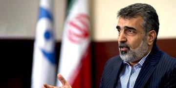 کمالوندی: همواره گفتهایم که ایران فشار و تهدید را نمیپذیرد